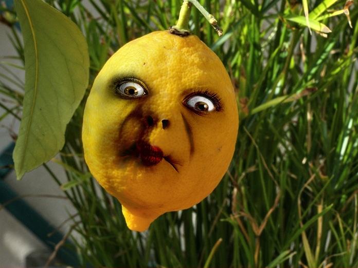 картинки прикольные виды лимона студии также можно