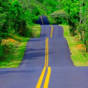 23 Mar 2005, Hawaii, Hawaii, USA --- Hilly Road --- Image by © Royalty-Free/Corbis